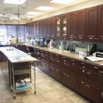 Williston Park Animal Hospital Main Exam Area